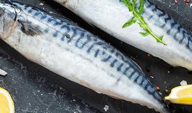 seafoodpic